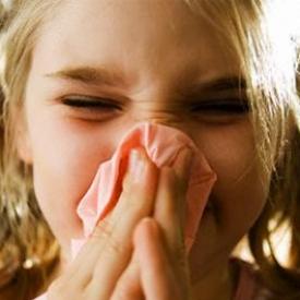аллергия,насморк,аллергический ринит,вазомоторный ринит