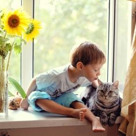 высказывания,детские высказывания,домашние животные,дети и животные