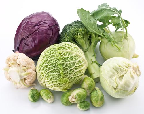Продукты питания для печени: капуста