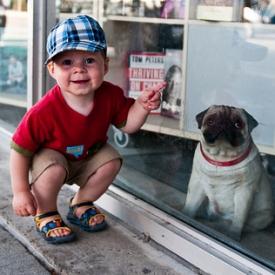 видео,смешное детское видео,собака
