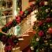 праздник,новый год,настроение;