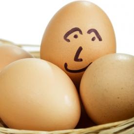 яйца в рационе ребенка,прикорм