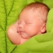 новрожденный,рефлексы новорожденного