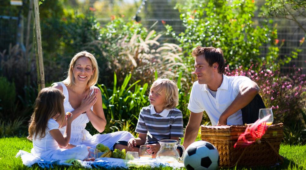 пикник с семьей