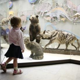 Международный день музее, какие музеи посетить бесплатно