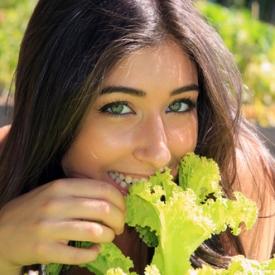 листья салата,зелень,полезный продукт