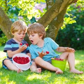 здоровье ребенка,лето,закаливание