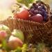 осенний рацион, осенние продукты, рацион в октябре, поздние сорта винограда, полезные свойства свеклы, лесной орех