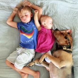 Джессика Шиба, блоггер Джессика Шиба, щенок Тео, домашний питомец, молодая мама, дружба собаки и детей