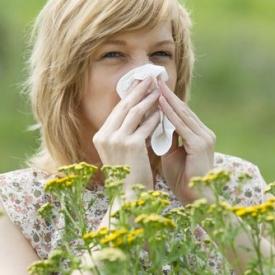 аллергия,поллиноз