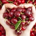 овощи,фрукты,нитраты,прикорм