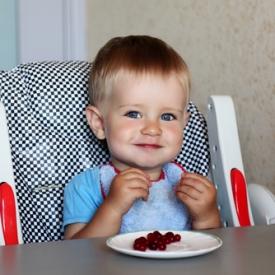 Сезон ягод открыт! Какие ягоды и в каком количестве можно предлагать ребенку?
