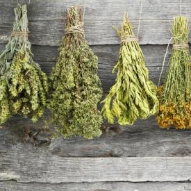 лечение травами,лечение,фитотерапия,аюрведа