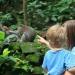 фото,как фотографировать детей,как фотографировать ребенка,идеи для фото,фотосессия с ребенком