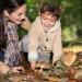 грибы,в чем опасность,заблуждения,мифы о грибах