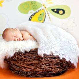 Ученые разработали игрушку, которая поможет улучшить детский сон