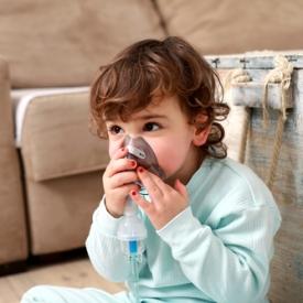 астма у ребенка,бронхиальная астма,плесень на стенах,чем опасна плесень на стенах,открытие ученых,Исследования ученых