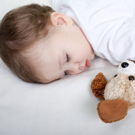 видео,сон,дети и животные,животное в доме,домашнее животное
