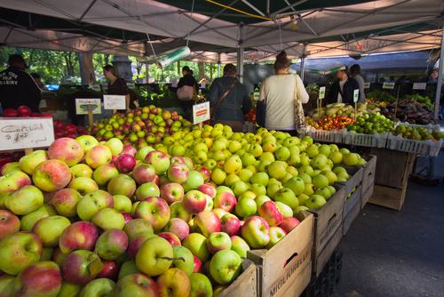 Ученые доказали, что яблоки продлевают нам жизнь