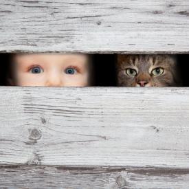 зрение малыша,факторы, которые влияют на зрение малыша