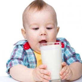 молоко,прикорм,молочные продукты