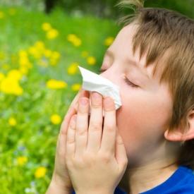 аллергия,пищевая аллергия,лечение аллергии