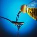 оливковое масло,растительные масла,растительное масло