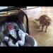 видео,смешное детское видео