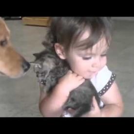 видео,смешное детское видео,домашнее животное