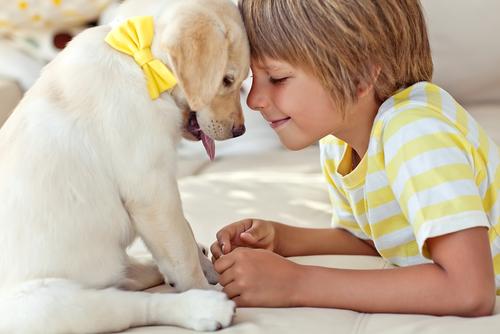 Детские вопросы: ребенок и собака