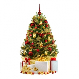 елка,на Новый год,как выбрать,правила выбора
