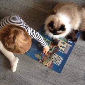 коты,дети,развитие,чтение