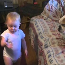 воспитание,собаки,дети,видео,смешное детское видео