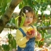 кукурузу ребенку,когда можно давать кукурузу,с какого возраста кукурузу,вареную кукурузу детям