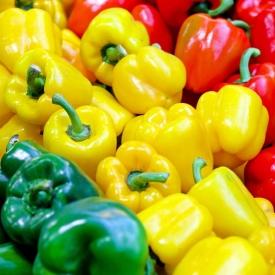 овощи,болгарский перец