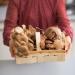 полезные свойства грибов, пищевая ценность, рацион ребенка, воздействие грибов на детский организм