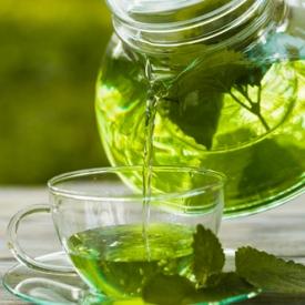 Чай с мятой и мелиссой при беременности