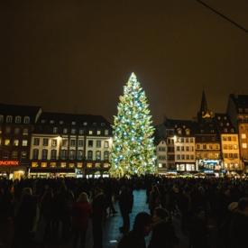 елка,новый год 2016,новый год,рождество