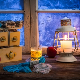 новый год 2016,праздник,зима,уют зимой,книга,кот,плед,теплые вязаные вещи,новогодние украшения,чай с бадьяном