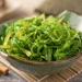 полезные свойства водорослей, морские водоросли, польза морских водорослей, виды морских водорослей, антиоксидантные свойства морских водорослей