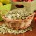 полезные свойства фенхеля, польза семя фенхеля, польза фенхеля для детей, аптечный укроп