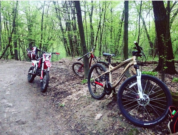 Велосипеды в Голосеевском лесу