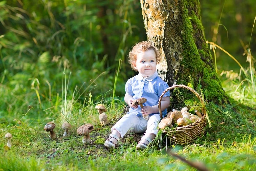 Малышка и грибы